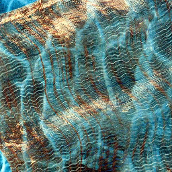Semi-transparaent fabric design. Yarns: copper wire and polyamide 6.6