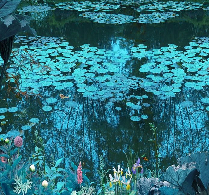 Design Monet Night